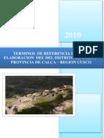 TERMINOS DE REFERENCIA PARURO.docx
