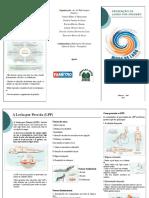 Folder -  LPP Prevenção