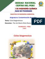 Ciclos biogenesicos