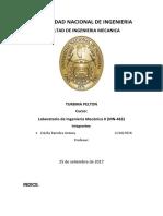 Informe 3 Tr Pelton