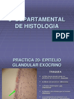 guia  de Histologia