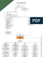 woc-apendisitis.pdf