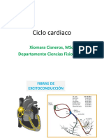 Ciclo Cardiaco Farm 1