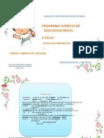 Documento de Inicial - D_curricular