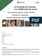 Manual Para El Manejo de La Cosecha Postcosecha y Clasificación Del Cacao