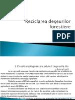 reciclarea deseurilor forestiere