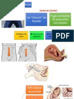 Presentación Clínica RPM