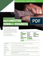 Automotive (Small Engine)