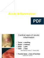 Acute Inflammation-MG.ppt