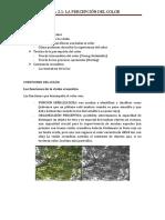 TEMA 2 PERCEPCION DE BAJO NIVEL COLOR, TAMAÑO, PROFUNDIDAD Y MOVIMIENTO.docx
