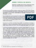 MANEJO DE CEMENTALES- BOVINOS