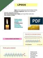 Lipidos y Biodiesel