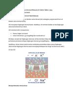 Lingkungan Eksternal Dan Internal Manusia & Faktor-Faktor Homeostasis
