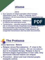 Parasit Malaria Summer 2012