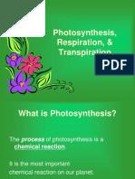 photocellresp  1