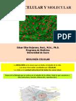 Clase 1 Introducción a la biol. cel mol