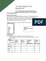 Microscope Lab- Estimating Field Diameter