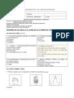Prueba Diagnostico c. Naturales 3º