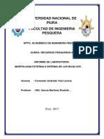 Informe 2 Recursos 2 (Bivalvos)