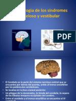 2-sindrome-cerebeloso-y-vestibular2(1)