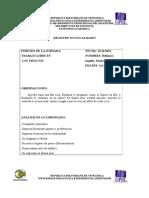 129590087 Registros Focalizados y No Focalizados