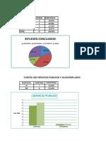 Porcentajes de Parasitologia