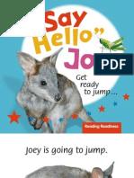 Say Hello Joey