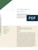 Pascual-Leone_Amedi_et al Ann Rev Neurosci 05.pdf