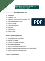 Programa Sistemas de Informacion Organizacionales