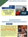 FORMATO-bienesPROPIEDAD HORIZONTAL