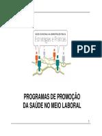 Programas de Promocao Da Saude No Meio Laboral Vitor Reis