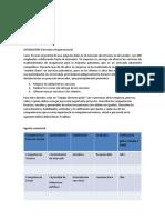 Deber-Estructura Organizacional.docx