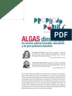 Algas Diminutas - Un Recurso Natural Renovable, Abundante y de Gran Potencial Industrial
