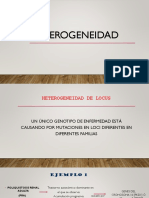 Heterogeneidad. Rojas Chacón