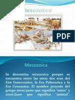 Mesozoic o
