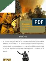 combateaincndiooficialclc-150921171446-lva1-app6892.pdf