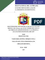 Efectividad del enjuague bucal de Matricaria chamomilla frente al de Plantago major en el control de la placa bacteriana en adolescentes de 15 a 16 años en la I.E.S. Juan Bustamante de Lampa 2017