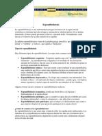 espondilistesis.pdf