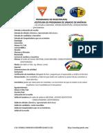Programas de Investidura Modelos