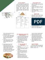 340890984 Leaflet Diit CKD Doc