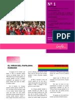 INFOSOMOS Nº 1 - Homofobia y fútbol