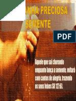 SEMENTE.pptx