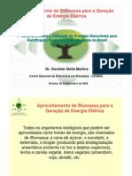 1°SeminárioFRE_ANEEL_CENBIO_Biomassa_041209