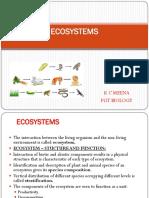14. Ecosystems 1