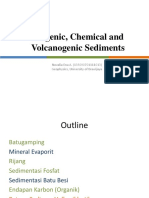 Biogenic, Chemical and Volcanogenic Sediments.pptx