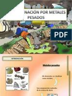 Contaminación Por Metales Pesados