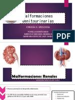 Malformaciones renales y ureterales