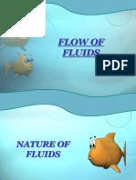 Fluid Flow (1)