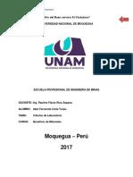 Informe de Laboratorio beneficio de minerales