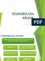 267185379-Vesikobulosa-Kronik-Hunied.ppt